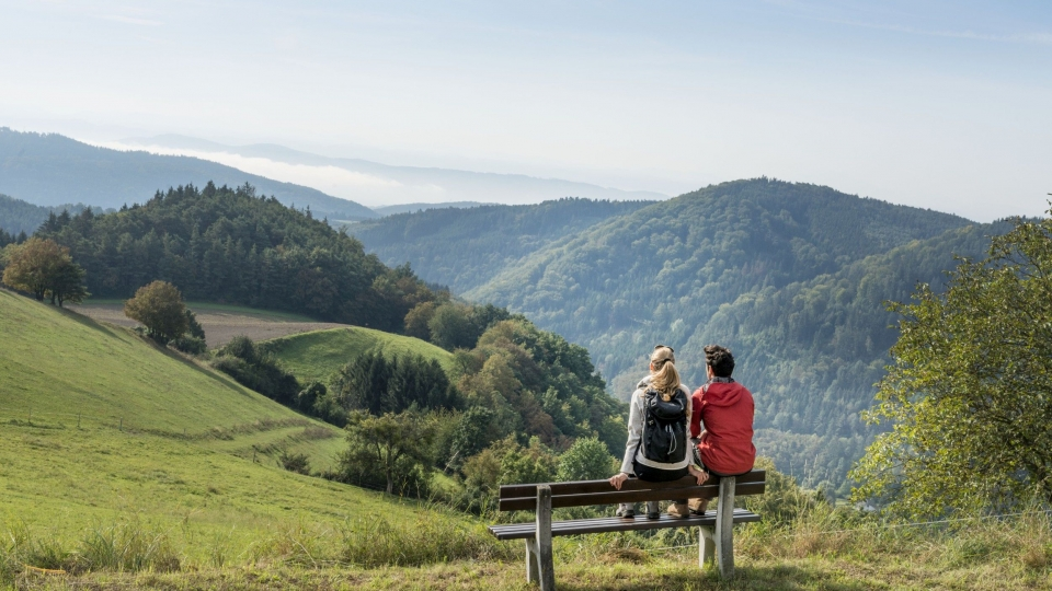 Wandern in Niederösterreich ist im Trend