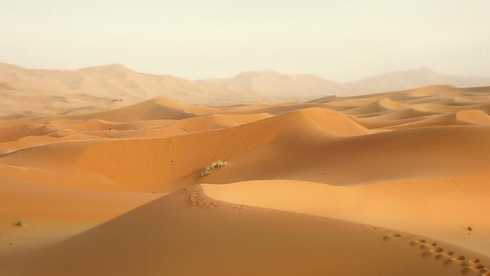 Marokkos Dünen durch Bauboom in Gefahr