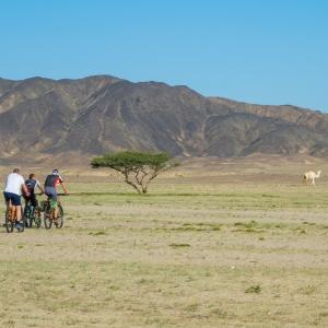 E-Bike-Touren durch die Wüste