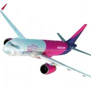 vida kritisiert Wizz Air-Bevorzugung durch WKO